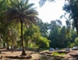 פארק הירדן- קמפינג בצפון
