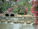 פארק הירדן