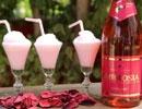זיו מנור - מופעי חוויה באלכוהול ויין