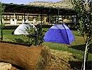 חוות מנצור בגליל - קמפינג (פתוח בחגים - פסח, שבועות, ראש השנה וסוכות. וכן, בחודש אוגוסט לאחר 9 באב)
