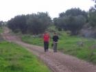 טיול טיולים טיול אל יער בן שמן