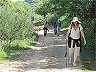 טיול טיולים נחל דישון - טיולים באזור גליל עליון
