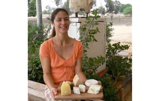 מחלבת צאלה - מבחר גבינות איכותיות