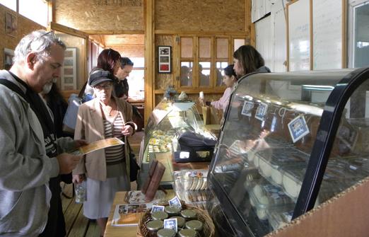 מחלבת צאלה - מרכז המבקרים שלנו