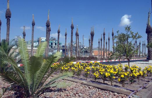 מרכז מבקרים נאות חובב - אזור המפעל