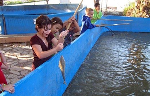 דג בכפר - פארק דייג וקמפינג- ילדים דגים