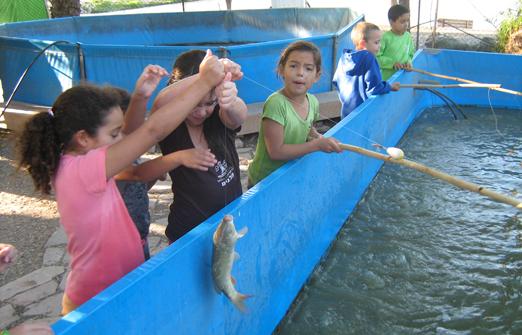 דג בכפר - פארק דייג וקמפינג - דייג מיוחד  לילדים