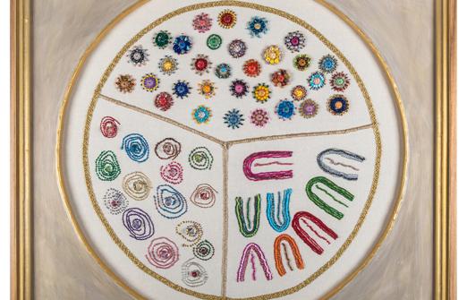 זרעים של צבע