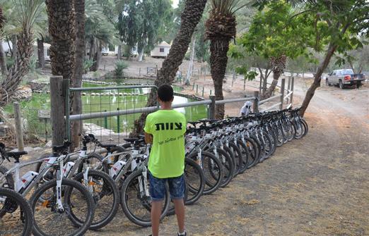 פייס-בייק טיולי אופניים- האופניים