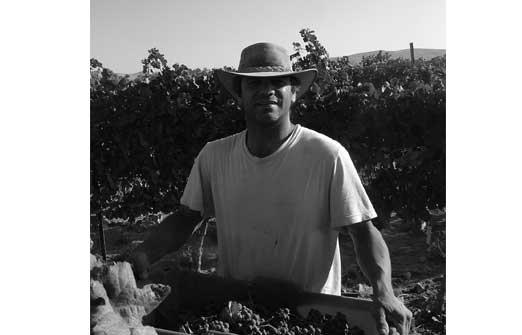 חוות נחל בוקר - חנות היין