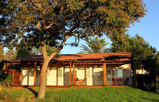 חדרים צמודי קרקע נוף - החצר