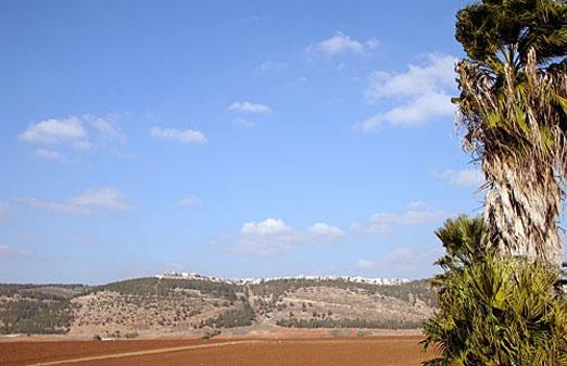 צימרים בקיבוץ מזרע - פינה בעמק - הנוף