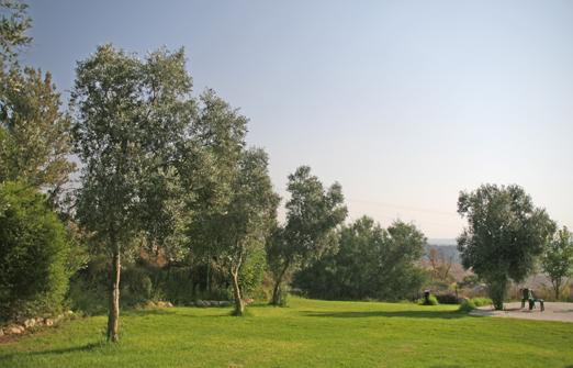 מלון אורחים נווה שלום - הנוף
