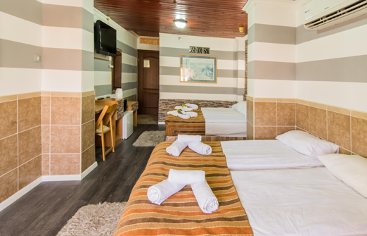 מלון אלסקה אין - פנים החדר המפנק