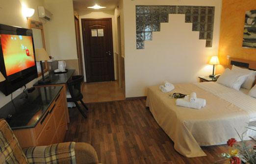 מלון אלסקה אין  - דלאקס עם גקוזי גדול ומרפסת