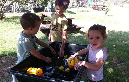 ברווזים בכפר - פעילות חינוכית לילדים