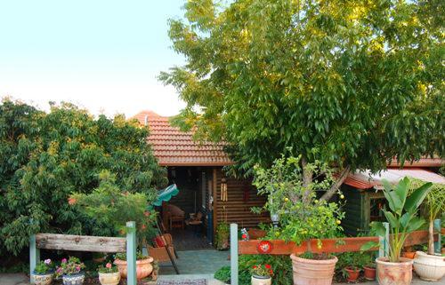 בקתת ירוק יער - כניסה לבקתה