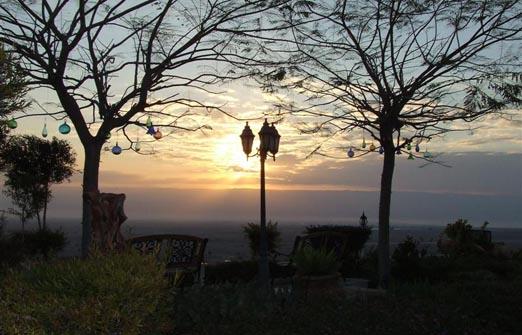 פנינת ורד אחוזה במדבר - זריחה