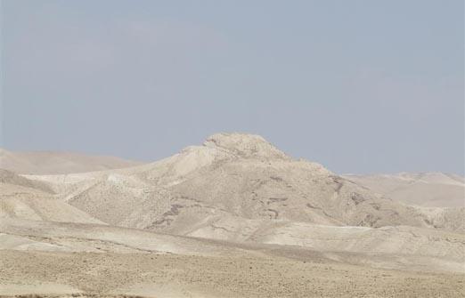 פנינת ורד אחוזה במדבר - הנוף