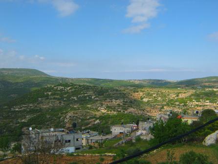 סמי המארח - הנוף באזור