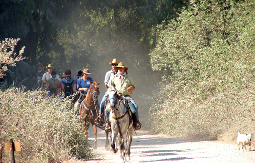 חוות דובי -טיולי סוסים לזוגות ובקבוצות