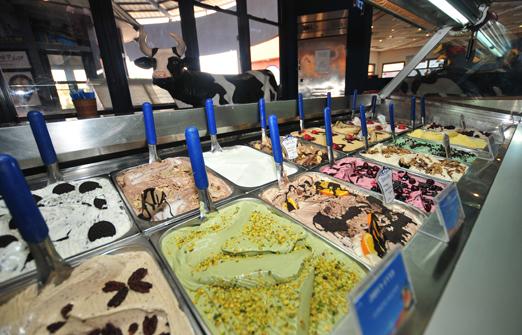 פונדק יטבתה - מגוון טעמי הגלידות שלנו