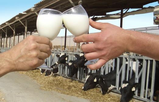 פונדק יטבתה - חלב
