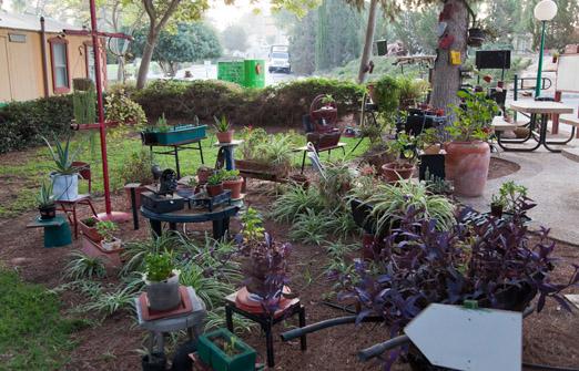 כפר נופש משאבים בקיבוץ משאבי שדה - החצר היפה