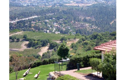 ירוק בהר שורש - עמוד הבית